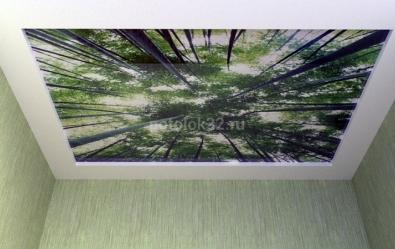 Покупайте потолки без запаха - статьи студии Потолок32
