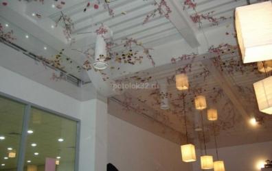 Авторский потолок в магазине - работы студии Потолок32