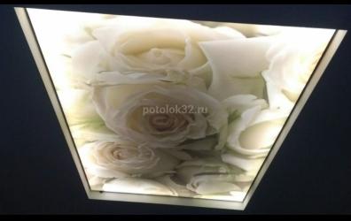 """Светящийся натяжной потолок с фотопечатью """"Белые розы"""" - работы студии Потолок32"""