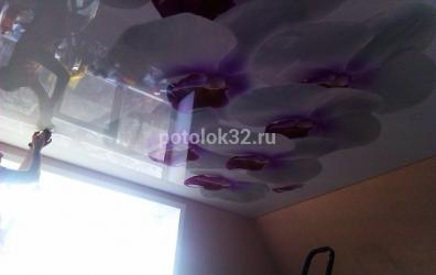 фотопечать орхидея на глянцевом потолке - работы студии Потолок32
