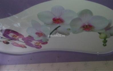 Двухуровневый потолок с художественной печатью орхидея белого цвета - работы студии Потолок32